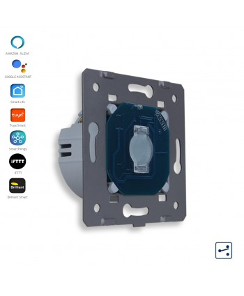 1 Gang - 2 Ways - Module / Smart WiFi